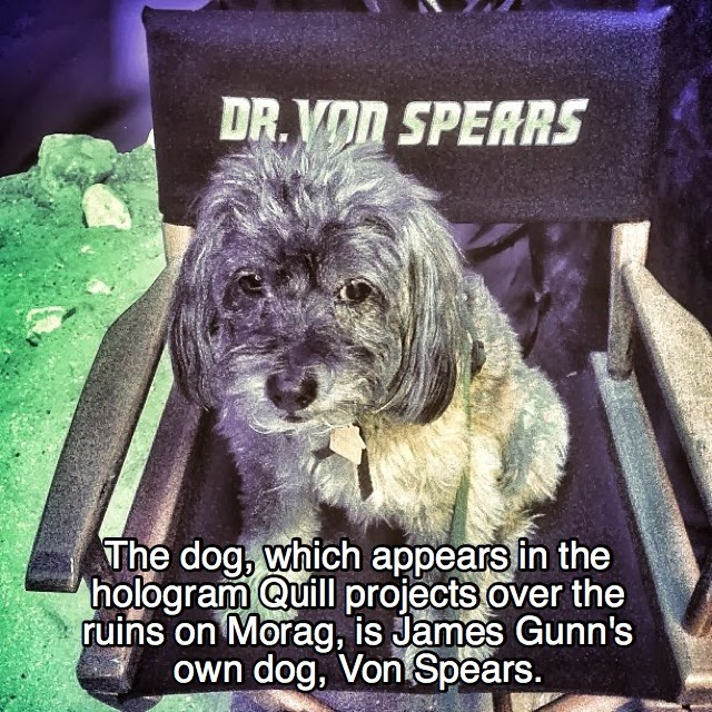 Dog - DR.VOD SPERRS The dog, which appears in the hologram Quill projects over the ruins on Morag, is James Gunn's own dog, Von Spears.