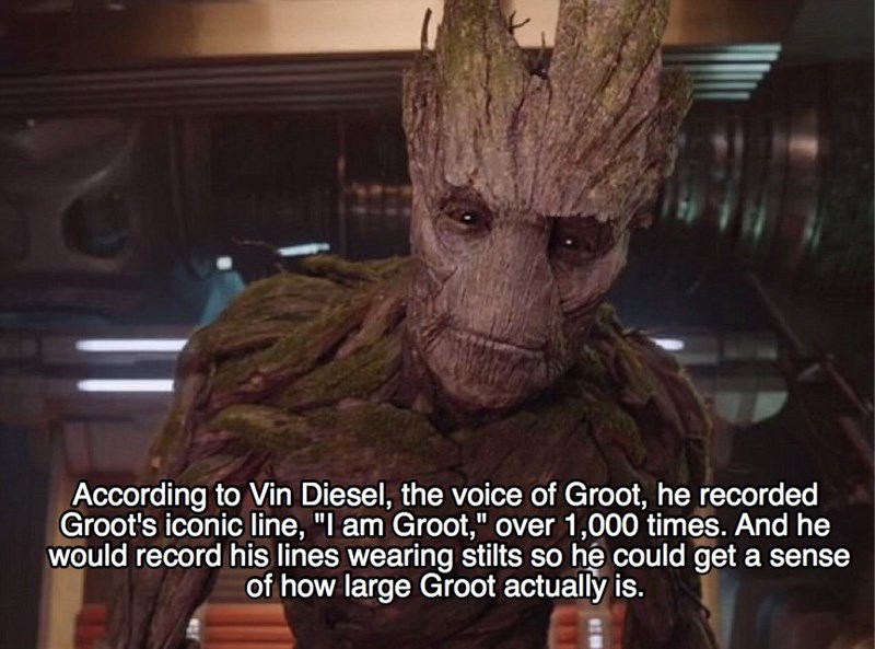 """Fictional character - According to Vin Diesel, the voice of Groot, he recorded Groot's iconic line, """"I am Groot,"""" over 1,000 times. And he would record his lines wearing stilts so he could get a sense of how large Groot actually is."""
