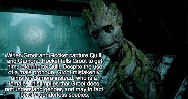 Fictional character - When Groot and Rocket capture Quill and Gamora, Rocket tells Groot to get him, referring to Quill, Despite the use of-a male pronoun, Groot mistakenly aims for Gamora instead, who isa female. This implies that Groot does not understand gender, and may in fact be of a genderless species.