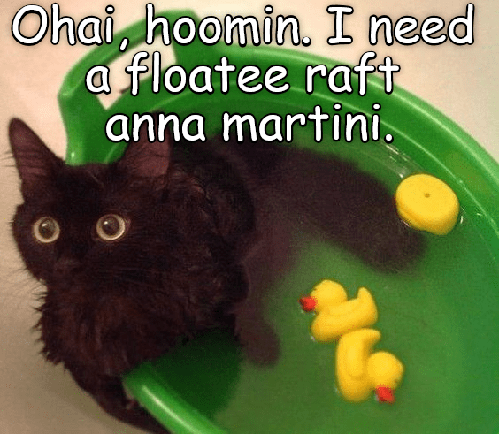 cat floatee martini raft need