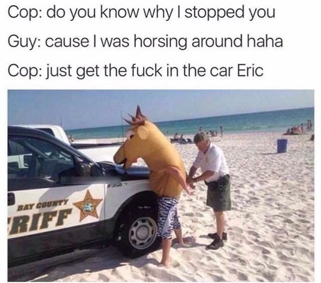 Wednesday meme of guy in horse costume making puns while getting arrested