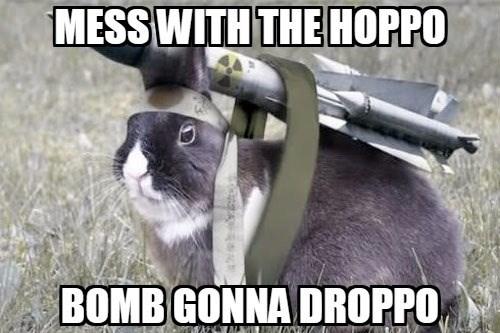 Photo caption - MESS WITH THE HOPPO BOMB GONNA DROPPO EATALMAKANr