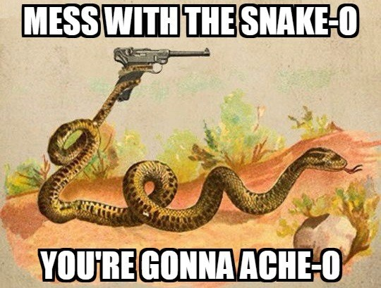 Reptile - MESSWITH THESNAKE-O YOURE GONNAACHE-O