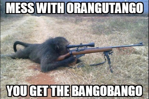 Gun - MESS WITH ORANGUTANGO YOUGET THE BANGOBANGO