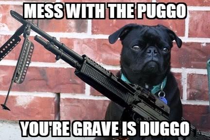 Gun - MESS WITH THE PUGGO YOURE GRAVE IS DUGGO