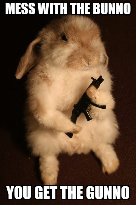 Photo caption - MESS WITH THE BUNNO YOU GET THE GUNNO