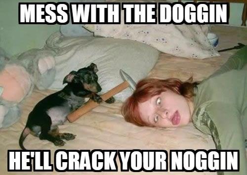 Photo caption - MESS WITH THE DOGGIN HELL CRACKYOURNOGGIN
