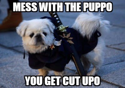 Dog - MESS WITH THE PUPPO YOU GET CUT UPO