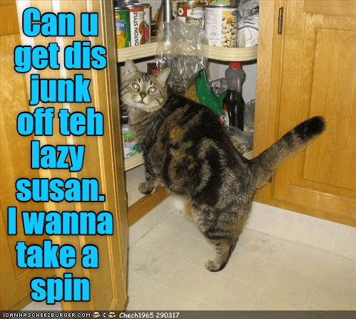 cat lazy susan spin caption junk - 9022734848