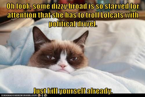 Grumpy Cat drivel dizzy political troll caption broad - 9022873600