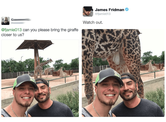 Selfie - James Fridman @fjamie013 Watch out. @fjamie013 can you please bring the giraffe closer to us?