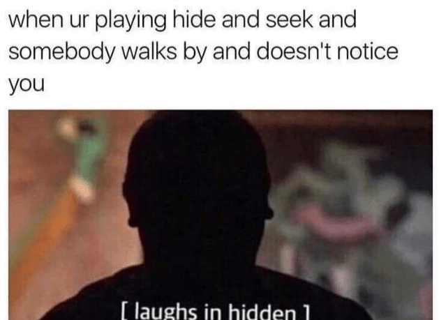 Text - when ur playing hide and seek and somebody walks by and doesn't notice you [laughs in hidden 1