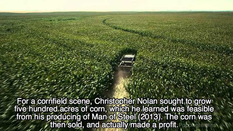 Field - For a cornfield scene, Christopher Nolan sought to grow five hundred acres of corn, which he learned was feasible from his producing of Man of Steel (2013). The corn was then sold, and actually made a profit.Pengrermlins,