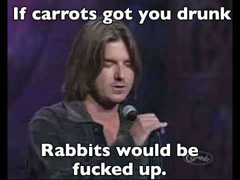 Photo caption - If carrots got you drunk Rabbits would be fucked up.