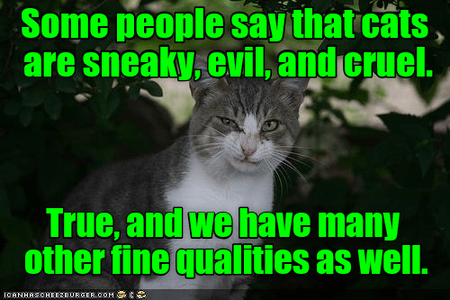 evil sneaky qualities good caption cruel Cats - 9023577856