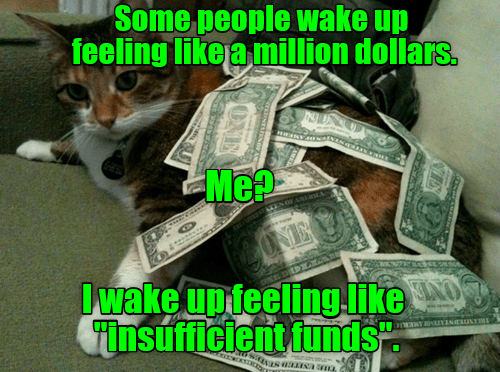 cat,insufficient,wake up,people,funds,million,dollars,caption