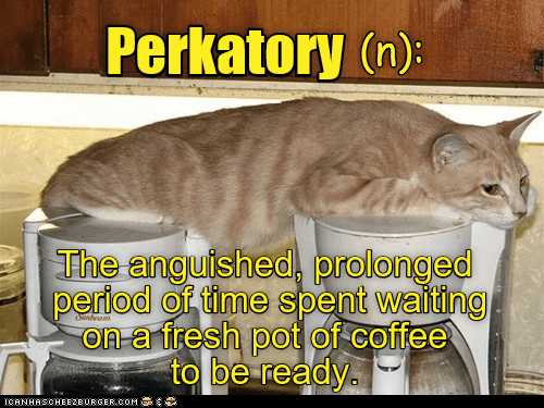 cat perkatory time waiting (purgatory) coffee caption prolonged