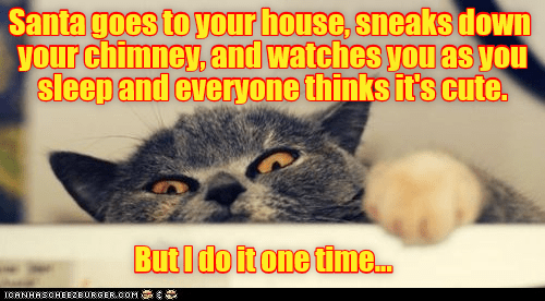 cat,chimney,watches,sleep,santa,caption,sneaks