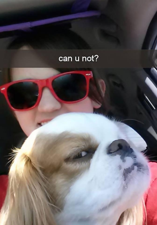 snapchat - Eyewear - can u not?