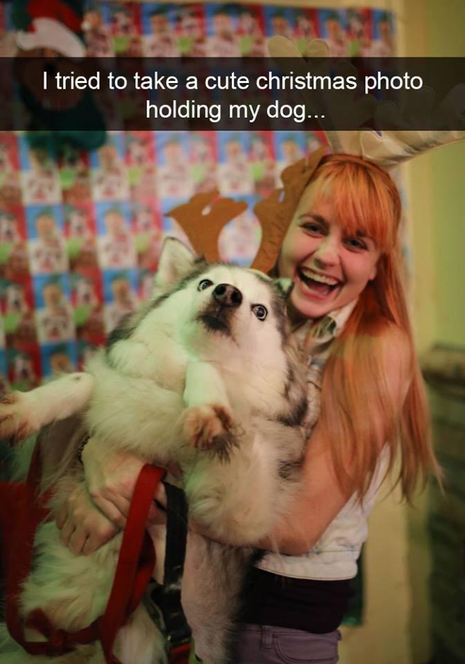 snapchat - Dog - I tried to take a cute christmas photo holding my dog...