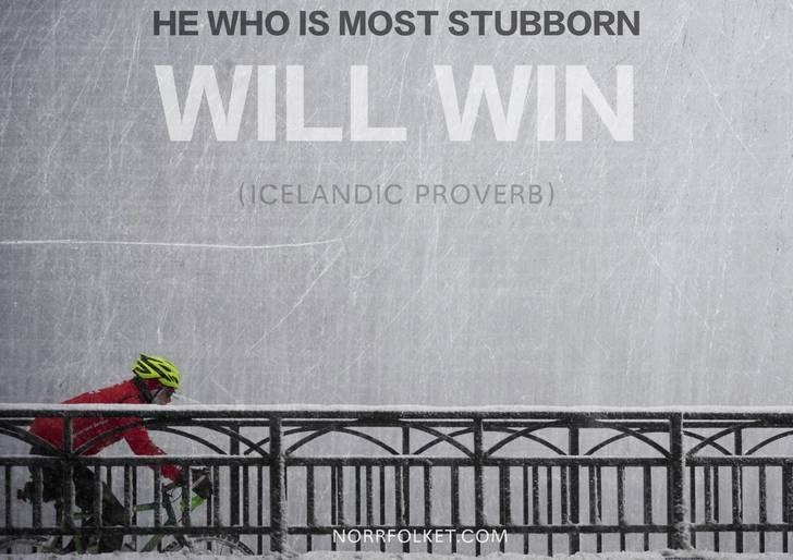 Text - HE WHO IS MOST STUBBORN WILL WIN (1CELANDIC PROVERB) NORRFOLKETCOM