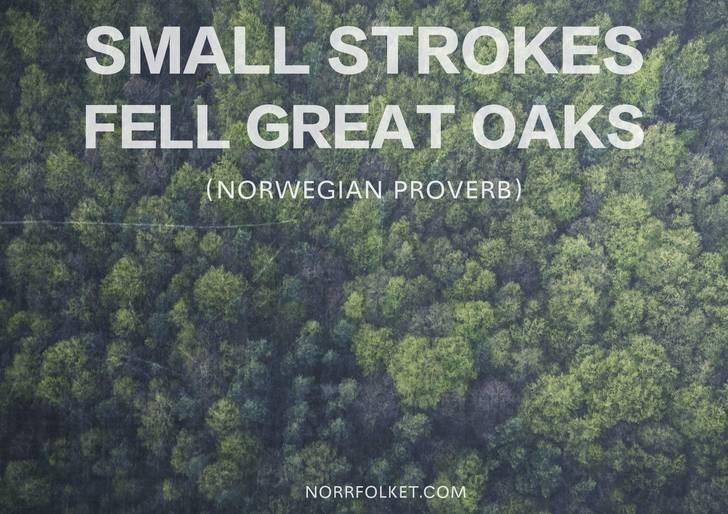 Vegetation - SMALL STROKES FELL GREAT OAKS (NORWEGIAN PROVERB) NORRFOLKET.COM