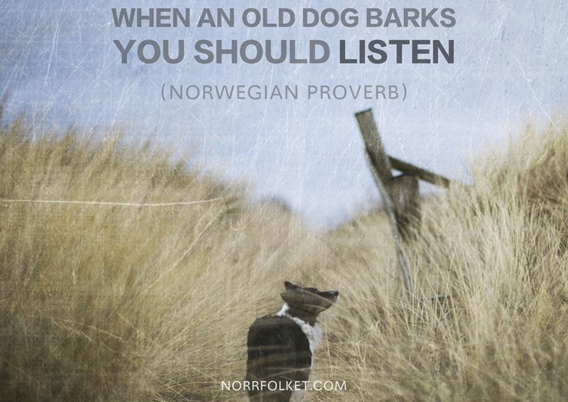 Text - WHEN AN OLD DOG BARKS YOU SHOULD LISTEN (NORWEGIAN PROVERB) NORRFOLKET.COM