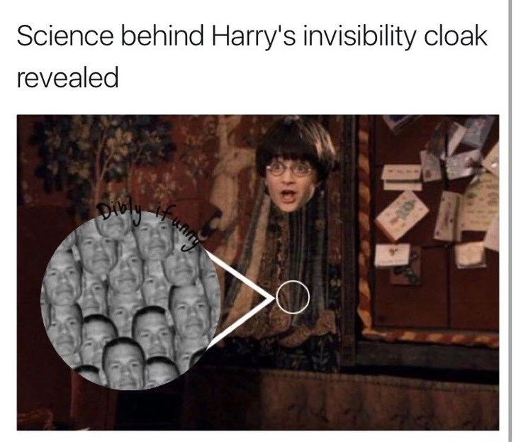 inappropriate meme about Harry Potter's invisibility cloak and John Cena
