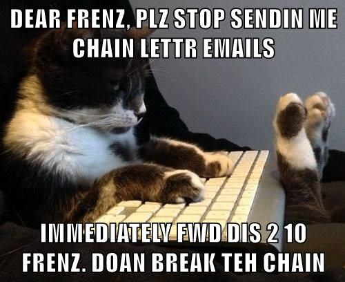 Funny cat meme of a cat sending out an email against chain letters with a very obvious ulterior motive to start a chain letter and in all caps.