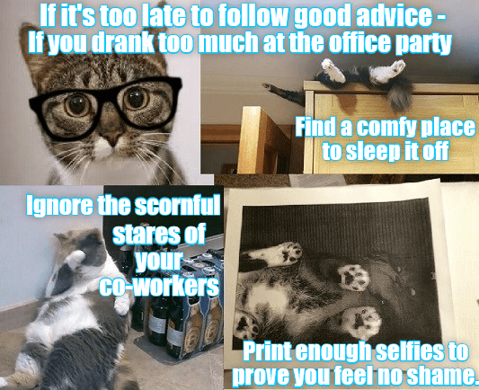 cat,drank,Office,advice,Party,too late,caption