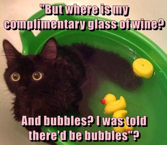"""But where is my complimentary glass of wine? And bubbles? I was told there'd be bubbles""?"
