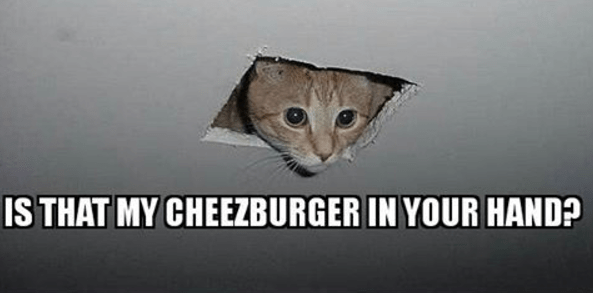 Cat peaking from a hole in the ceiling to check if that is his Cheezburger.