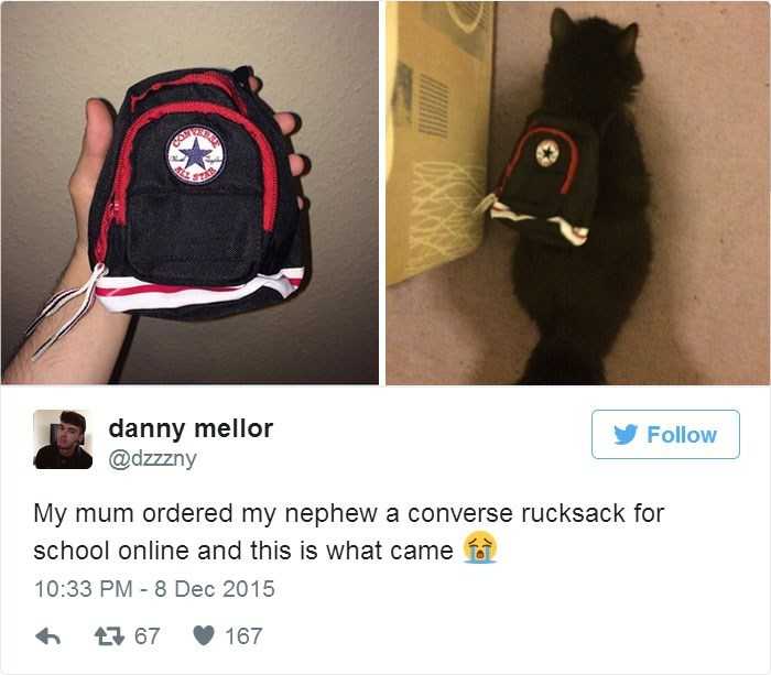 Backpack - AL danny mellor @dzzzny Follow My mum ordered my nephew a converse rucksack for school online and this is what came 10:33 PM 8 Dec 2015 167 t 67