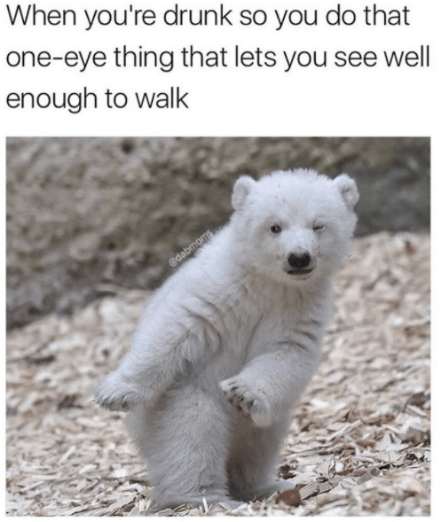 Polar bear - When you're drunk so you do that one-eye thing that lets you see well enough to walk edabmoms