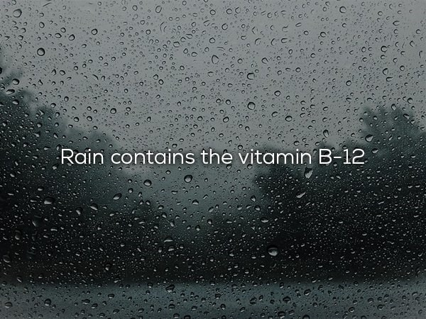 Water - Rain contains the vitamin B-12