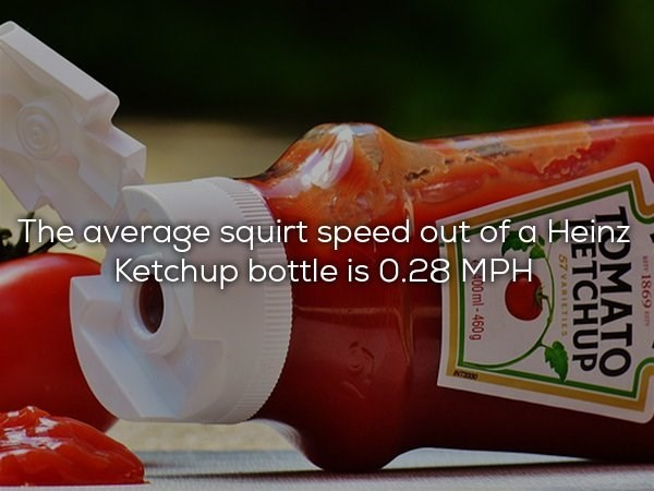 Ketchup - The average squirt speed out of a Heinz Ketchup bottle is 0.28 MPH ST 1869 TOMATO DETCHUP 57 YARILTILS 00ml-460g 51