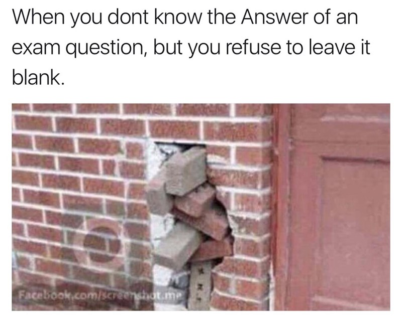 Memes - 9025294336