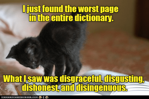 Dry pun dead pan meme of a cat on a dictionary describing an experience like a book.