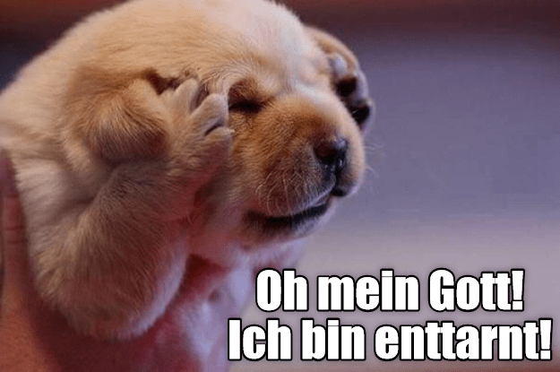 Dog meme of a German LOL dialect.