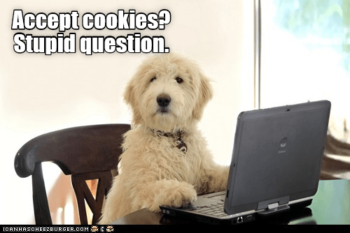 Dog meme about how of course he accepts cookies.