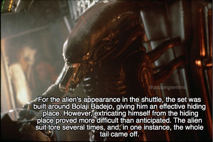 Font - @poppingremlins For the alien's appearance in the shuttle, the set was built around Bolaji Badejo, giving him an effective hiding place. However, extricating himself from the hiding place proved more difficult than anticipated. The alien suit tore several times, and, in one instance, the whole tail came off.