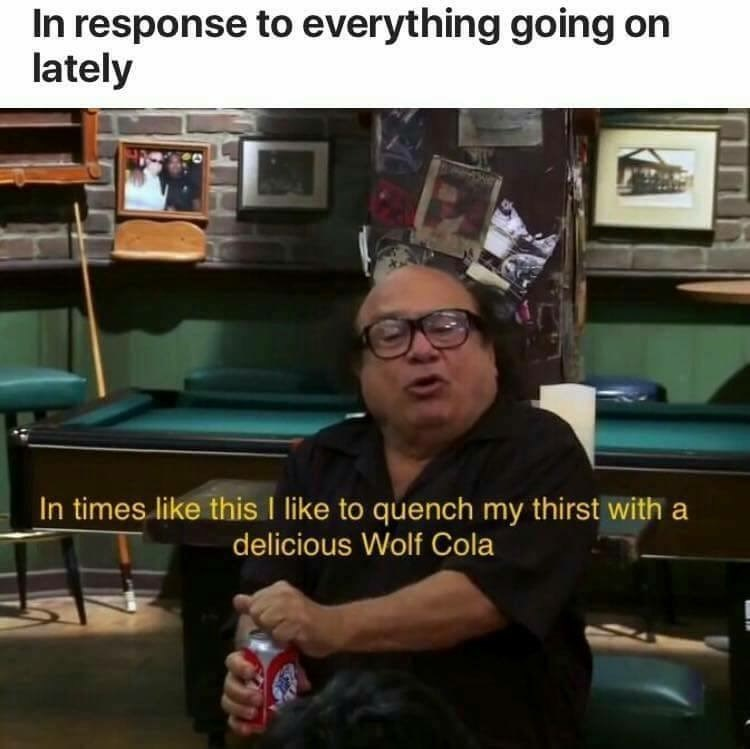 Hank from Always Sunny filming an ad for Wolf Cola