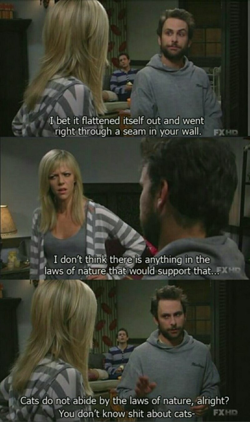 funny meme of Always Sunny scene of Charlie explaining cats don't abide by the laws of physics