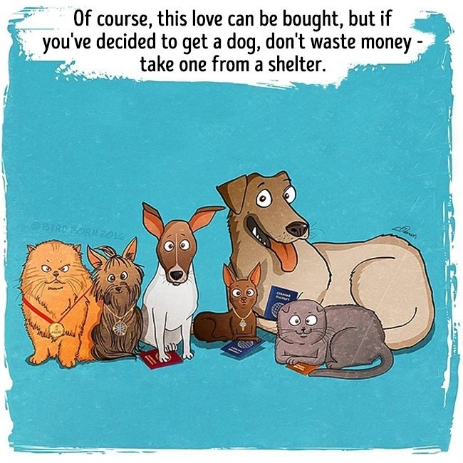 Cartoon - Of course, this love can be bought, but if you've decided to get a dog, don't waste money take one from a shelter. O BIRD BORN 2016 P