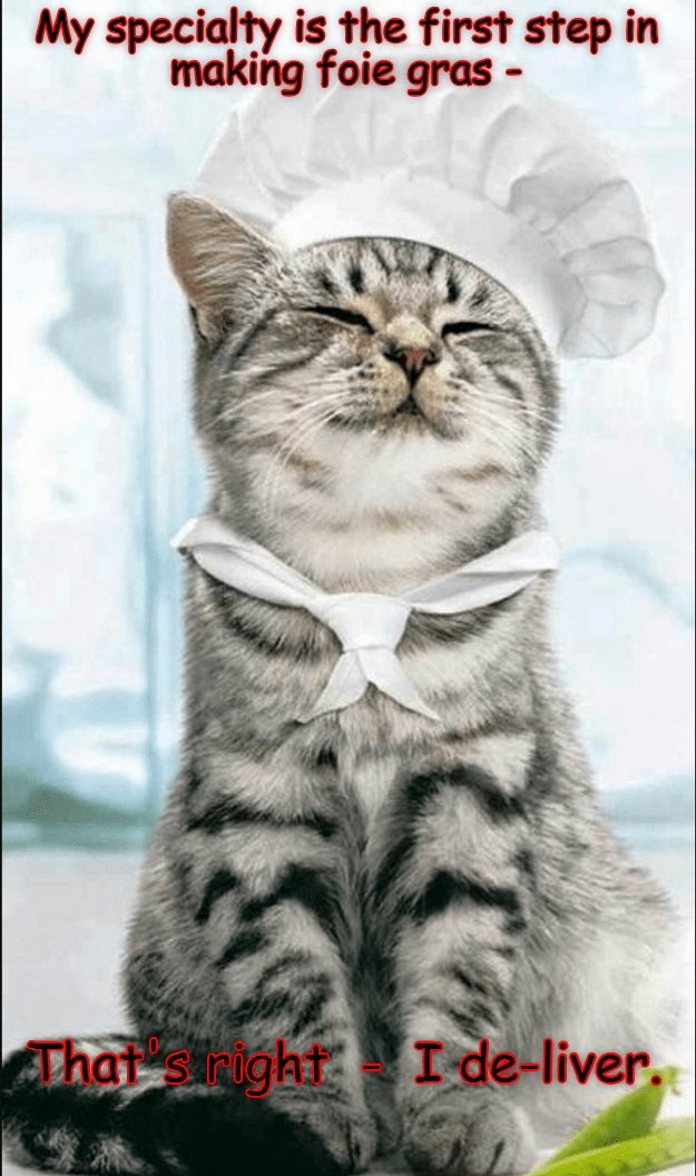 Funny cats meme of a cat dressed as a chef and saying how the first part of making fois gras is to de-liver.