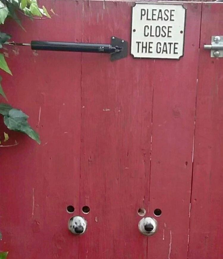 Red - PLEASE CLOSE THE GATE