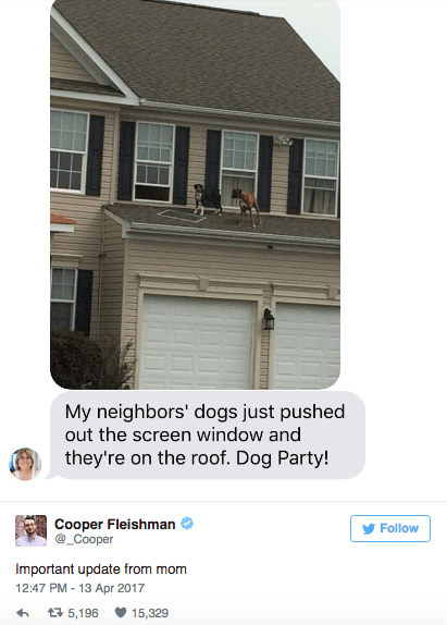 Property - My neighbors' dogs just pushed out the screen window and they're on the roof. Dog Party! Cooper Fleishman @_Cooper Follow Important update from mom 12:47 PM-13 Apr 2017 t5,196 15,329