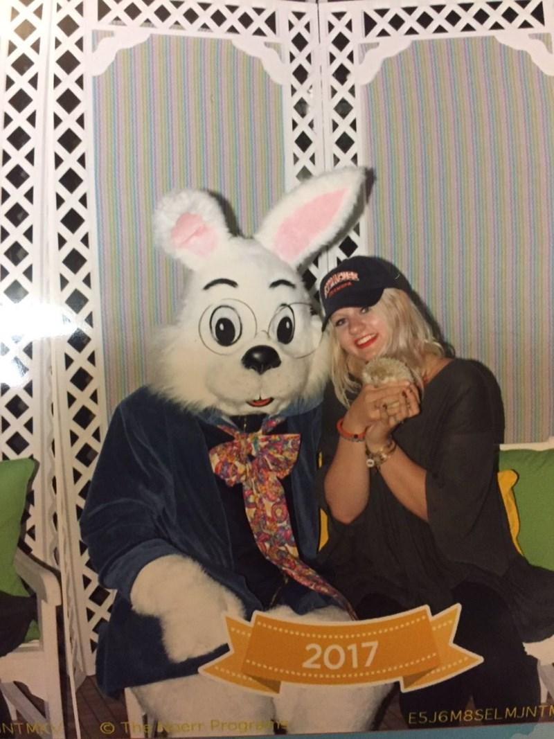 Easter bunny - 2017 NTMK The err Progra E5J6M8SELMJNTN