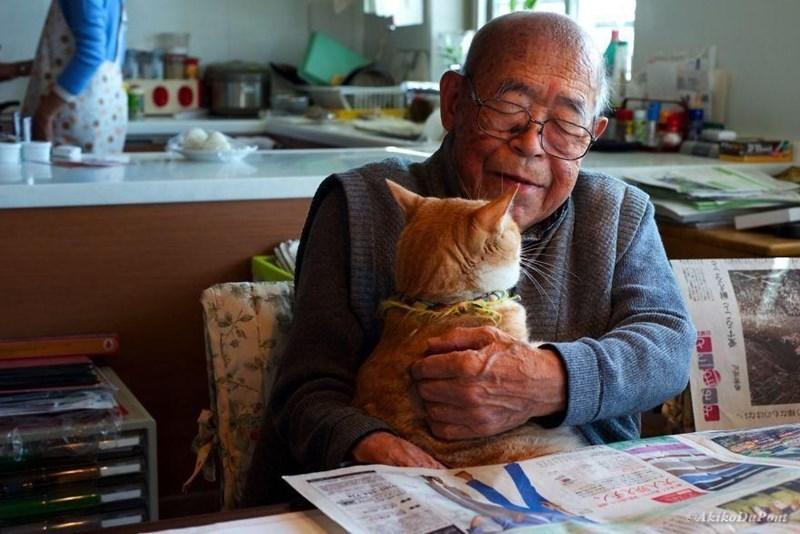 Cat - 12/19dC CAkikoDuPont