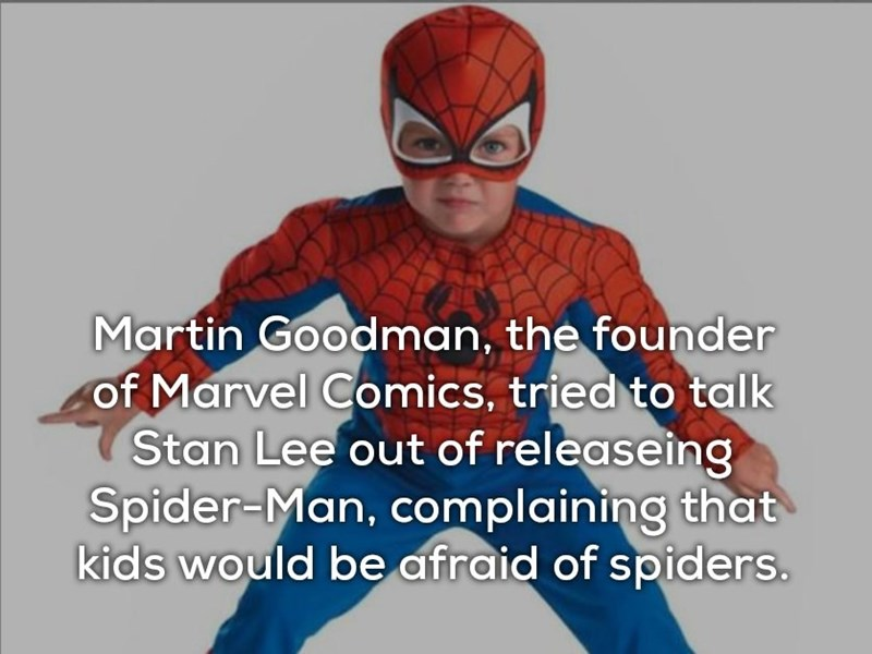 Spider-man - Martin Goodman, the founder of Marvel Comics, tried to talk Stan Lee out of releaseing Spider-Man, complaining that kids would be afraid of spiders.